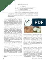Rheology-of-cats.pdf