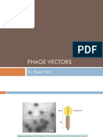 Bacteriophage as Vector2