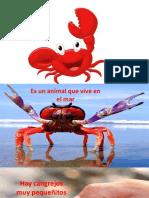 PPT El Cangrejo