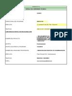 F-19 Programacion de Valorizacion Mensual.xls