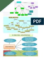 Mapa Conceptual de Biologia