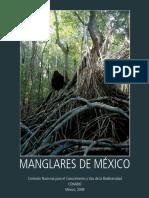Los Manglares de Mexico