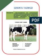 175999884-Expediente-Tecnico-Puquio-248988-Ganado-Lechero.pdf