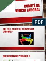 Presentación comite.pptx