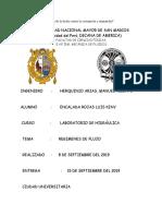 Luis Informe1