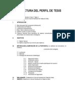 ESTRUCTURA_DEL_PERFIL_DE_TESIS (1).doc