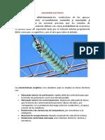AISLADORES ELECTRICOS1.docx