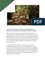 A Produção de Mel de Abelhas Nativas é Uma Das Atividades Que Proporciona Manutenção Da Cultura Indígena e Renda Para as Famílias