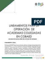 LINEAMIENTOS PARA LA OPERACIÓN  DE ACADEMIAS COLEGIADAS EN COBAED 12-04-2019-ok.docx
