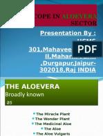 Aloevera Cultivation (2)