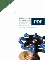 Plaquette Cash Management 131009