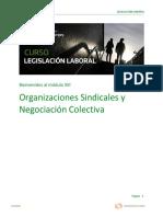 Legislacion Laboral - Modulo Xiii PDF