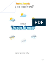 Proiect-tematic-1.pdf