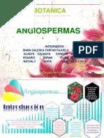 ANGIOSPERMAS  BOTANICA.pptx