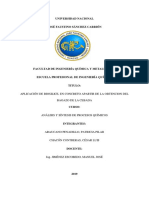 G6  InformeParcial_BIOSILICE