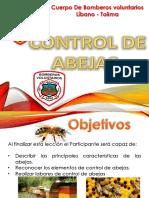 Abejas.pptx