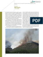 detección de incendios frestales con satelite.pdf