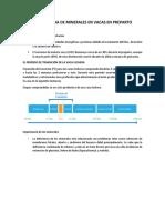 IMPORTANCIA DE MINERALES EN VACAS EN PREPARTO.docx