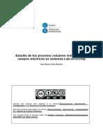 AMOB_TESIS.pdf