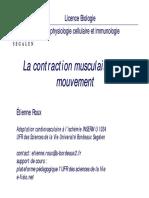 le_muscle.pdf