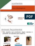 Aspectos Biológicos Dos Animais Peçonhentos