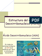 Estructura ADN Junio 07_.pdf