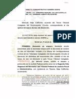 AmparoDir-nuevo estudio.PDF