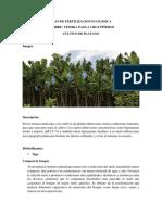 PLAN DE FERTILIZACION ECOLOGICA.docx