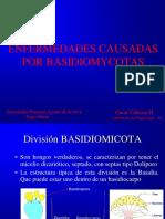8enfermedades Causadas Por Basidiomicotas_oscar Cabezas2017