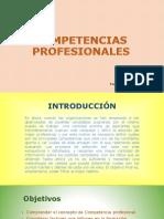 Presentaciones Efectivas - Competencias Profesionales