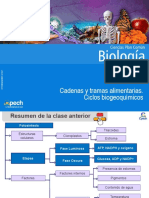 Clase 25 Cadenas y tramas alimentarias  Ciclos biogeoquímicos 2015