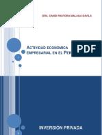 10. Actividad Economica Empresarial en El Peru Actual
