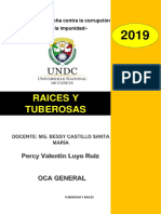 Percy Luyo Ruiz - Oca General