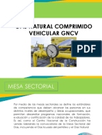 Gas Vehicular