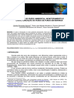 camila_fernanda_giannini.pdf
