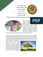 83147323-Analisis-Instrumental-y-la-Quimica-en-la-Ingenieria-Ambiental.docx