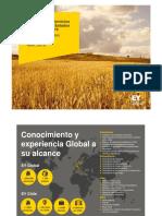 Propuesta de Auditoría IPAL E&Y