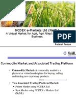 NeML Auction Training .pptx
