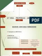 Resumen de la sentencia Manuel Anicama.pptx