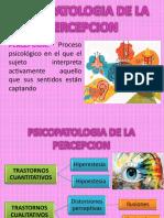 PSICOPATOLOGIA DE LA PERCEPCION.pptx