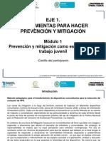 cartilla-participante-prevencion-mitigacion.pdf