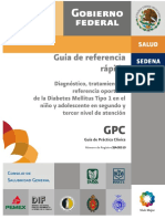 GPC_RR_DMT1_12-04-11_-_final_copia.pdf