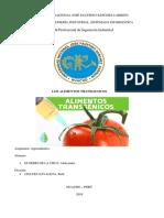 INFORME ALIMENTOS TRANSGENICOS.docx