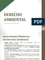 1a DERECHO AMBIENTAL -  antecedentes, declaraciones, const_.pptx