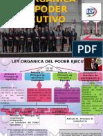 Ley Organica Del Poder Ejecutivo Ar 34