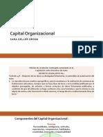 Organizacional