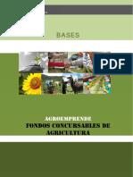 Bases Planes de Negocios.pdf