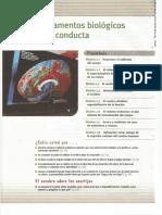 Capítulo 2 Fundamentos Biológicos de La Conducta