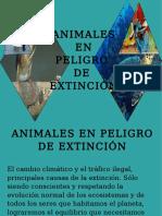 Animales Peligro Extincion OK
