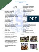 Taller de ciencias sociales (Periodo colonial).docx